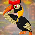 play Comely Hornbill Escape