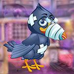 play Woeful Hurt Bird Escape