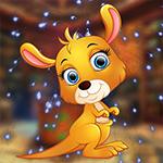 play Pet Kangaroo Escape