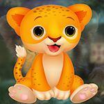 play Charming Baby Lion Escape