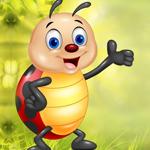 play Caring Ladybug Escape